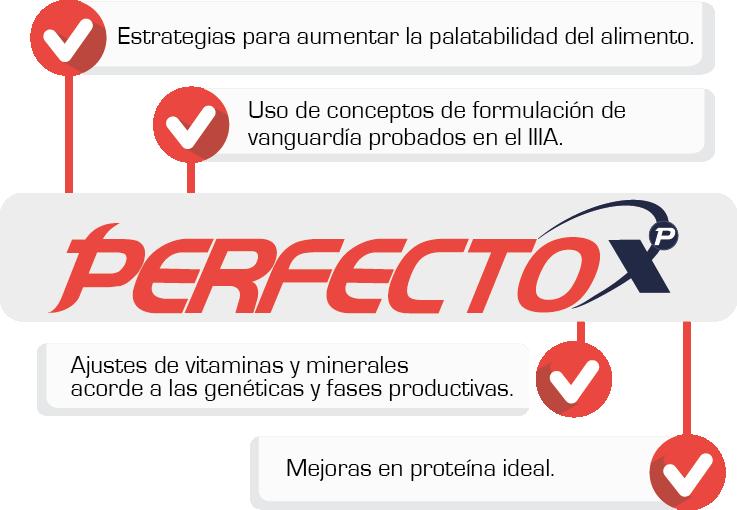 Perfecto XP — Bases, Premezclas y Premezclas Concentradas