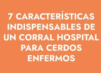 7 características indispensables de un corral hospital para cerdos enfermos